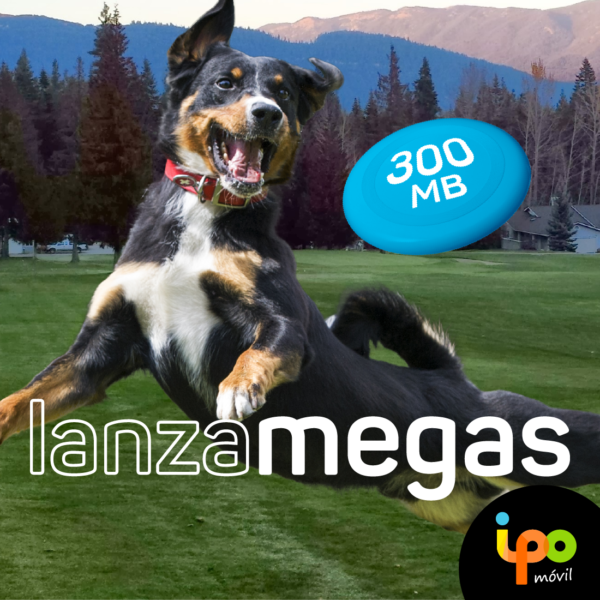 55ce7795a78 Envía lotes de 300Mb con el servicio Lanzamegas. Con el servicio Lanzamegas  de ipo móvil ...